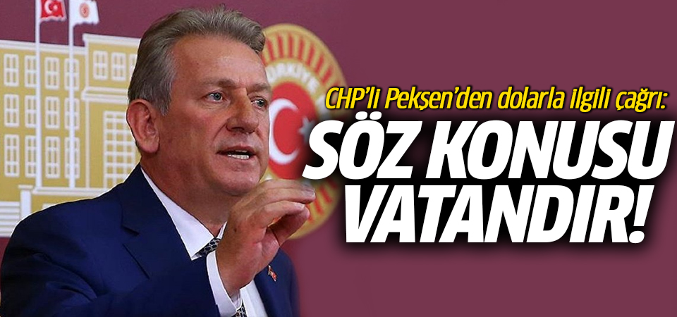 CHP'li Pekşen'den dolarla ilgili çağrı: Söz konusu vatandır!