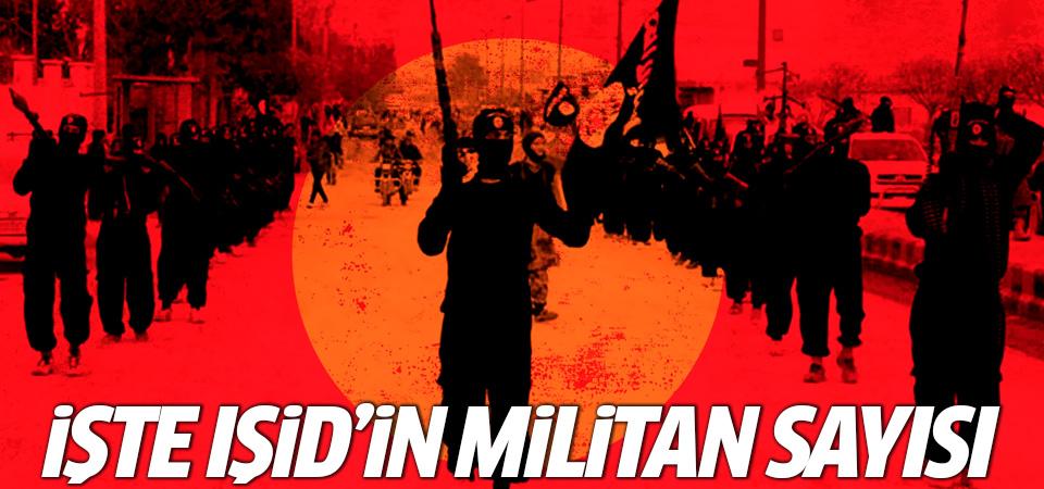 İşte IŞİD'in militan sayısı