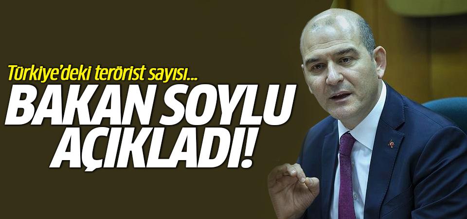 Bakan Soylu açıkladı! Türkiye'deki terörist sayısı...