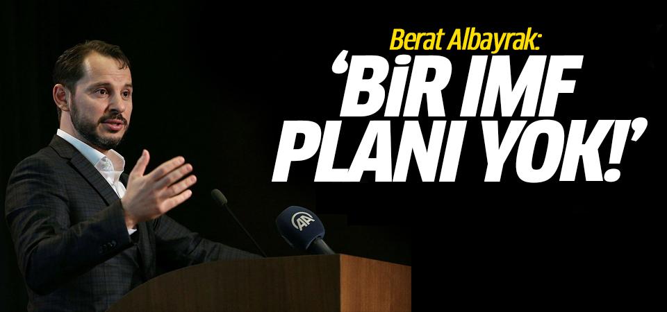 Berat Albayrak:  Bir IMF planı yok!