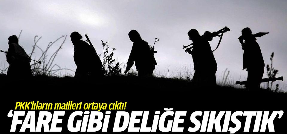 PKK'lıların mailleri ortaya çıktı! 'Fare gibi deliğe sıkıştık'