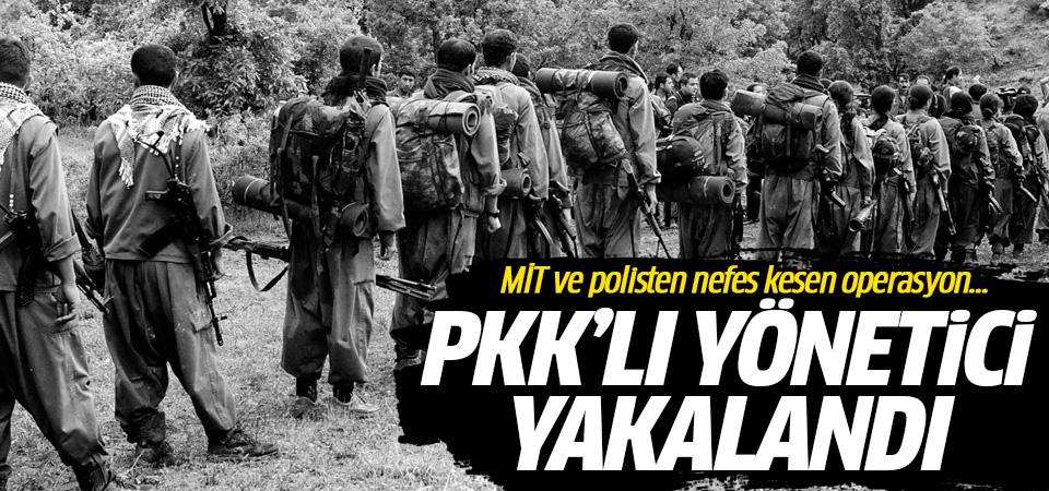 PKK'lı yönetici yakalandı! MİT ve polisten nefes kesen operasyon...