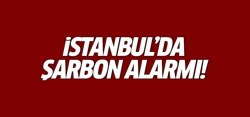 İstanbul'da şarbon alarmı: Çok sayıda kişi karantinada