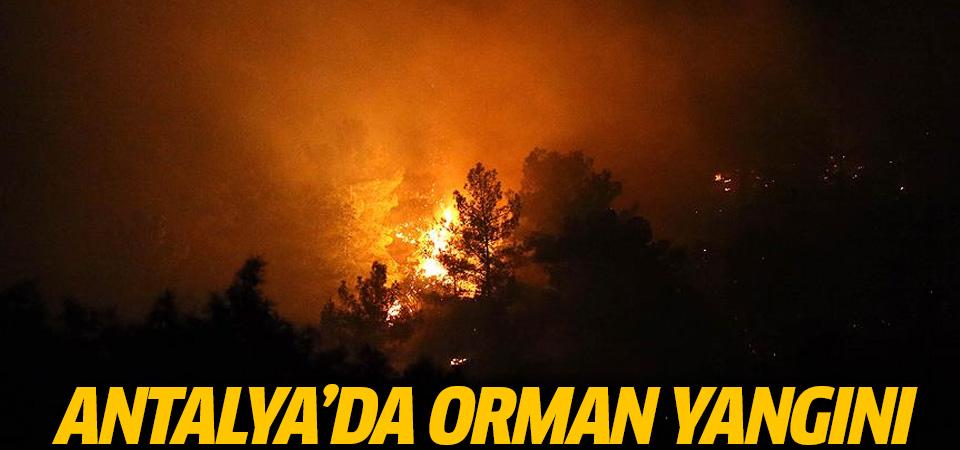 Antalya'da orman yangını! Tatil cenneti alev alev yanıyor