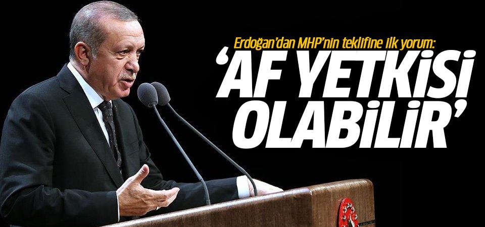 Erdoğan'dan MHP'nin teklifine ilk yorum: Af yetkisi olabilir