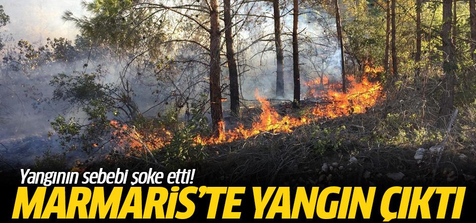 Marmaris'te çıkan yangının nedeni belli oldu!