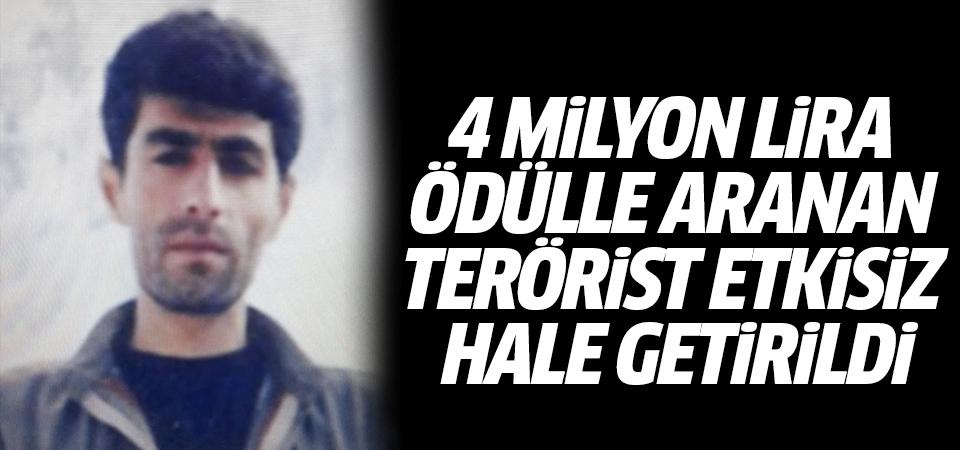 4 milyon lira ödülle aranan terörist etkisiz hale getirildi