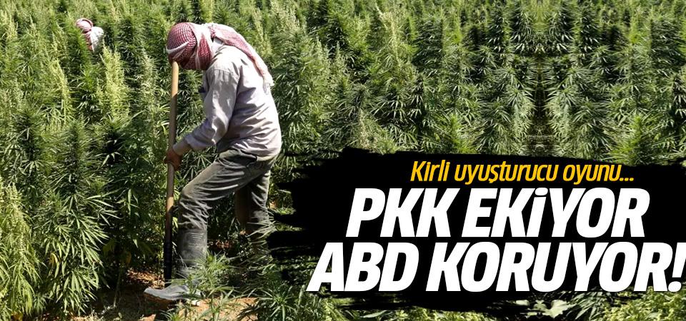 ABD ve PKK'nın kirli uyuşturucu oyunu! PKK ekiyor ABD koruyor