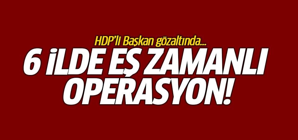 6 ilde eş zamanlı operasyon! HDP'li Başkan gözaltında...
