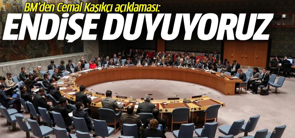 BM'den Cemal Kaşıkçı açıklaması: Endişe duyuyoruz