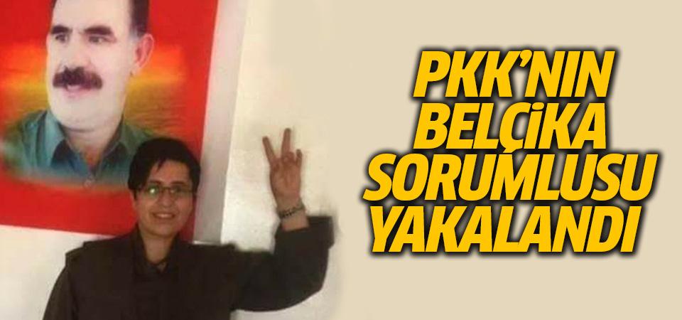 PKK'nın sözde Belçika sorumlusu Batman'da yakalandı