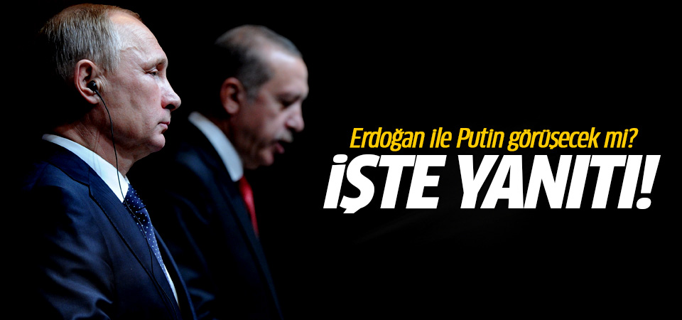 Putin ve Erdoğan Paris'te görüşecek mi? İşte yanıtı...