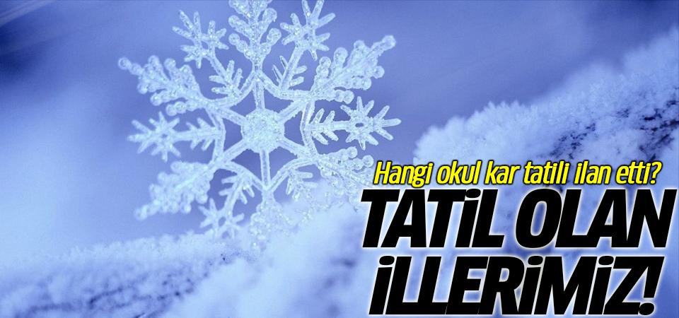 Hangi okul kar tatili ilan etti? Tatil olan illerimiz
