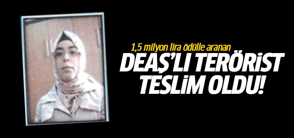 1,5 milyon lira ödülle aranan DEAŞ'lı terörist teslim oldu