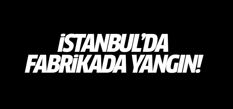 İstanbul'da fabrikada yangın!