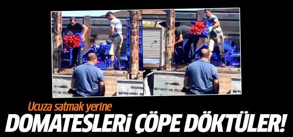 İstanbul'da ucuza satmak yerine, domatesleri çöpe döktüler!