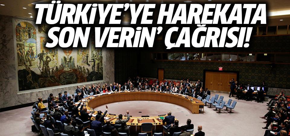 Türkiye'ye 'Harekata son verin' çağrısı