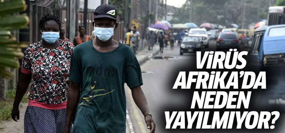 Koronavirüs Afrika'da neden yayılmıyor?