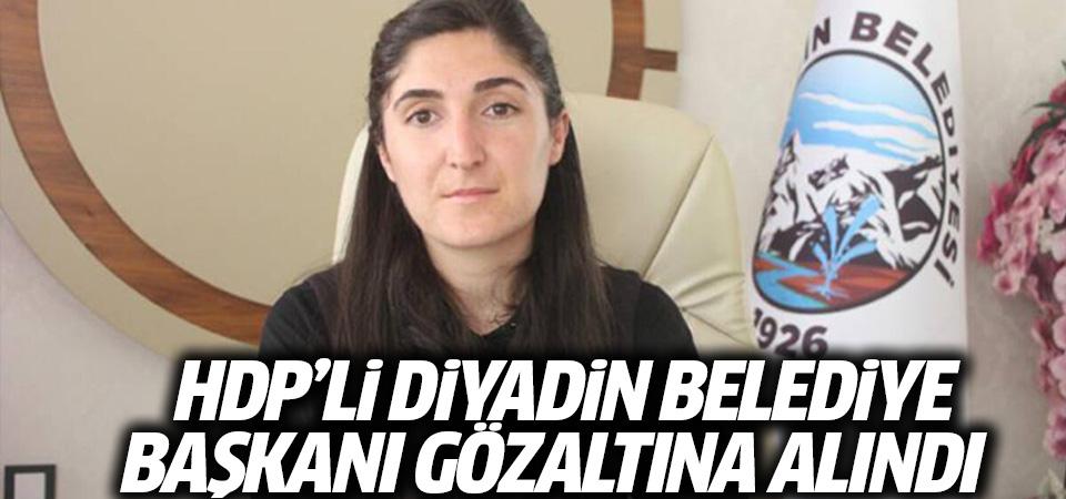 Diyadin Belediye Başkanı Yaşar gözaltına alındı