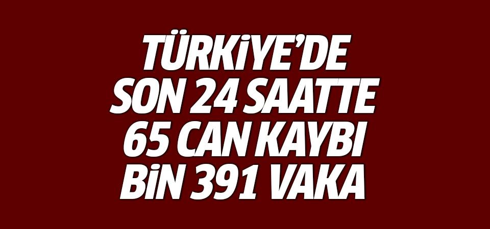 Türkiye'de corona virüsten son 24 saatte 65 can kaybı, bin 391 vaka 30 Eylül 2020