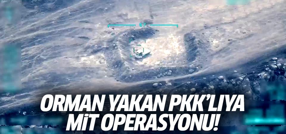 Orman yakan PKK'lıya MİT operasyonu!