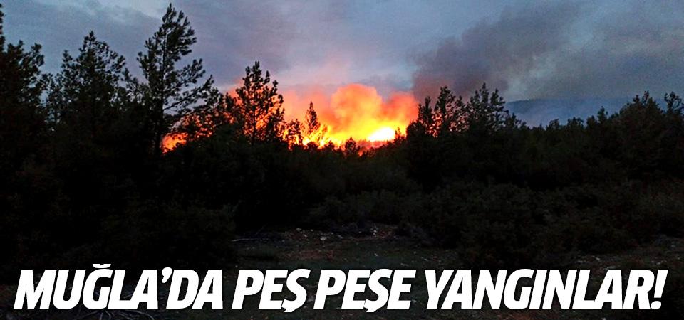 Muğla'da peş peşe yangınlar!
