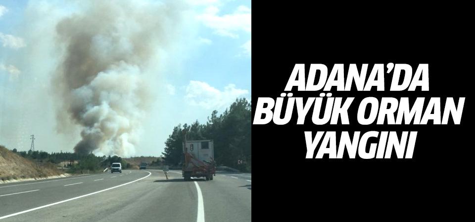Adana'da büyük orman yangını