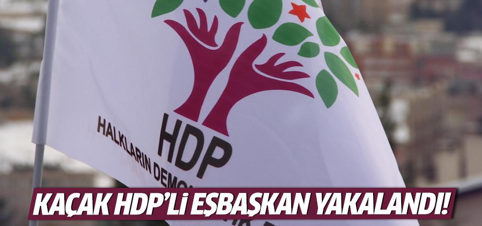 Kaçak HDP'li Eşbaşkan yakalandı!